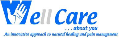 Well Care Chiropractic Inc
